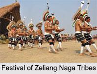 Zeliang Naga Tribes, Tribes of Nagaland