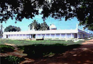 Kattubava Pallivasal Pudukkottai, South India