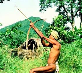 Koya Tribe