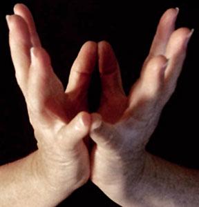 Simbol joge - Lotus Mudra