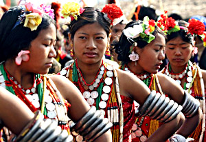 Naga Tribes of Assam, Indian Tribes