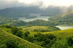 Nilgiri Biosphere Reserve, South India