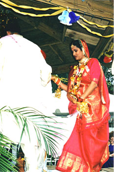 North Indian Wedding, Indian wedding