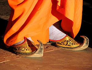 Rajasthani shoes