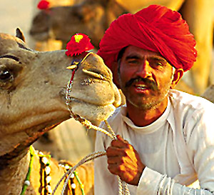 People of Jaipur, Jaipur Culture