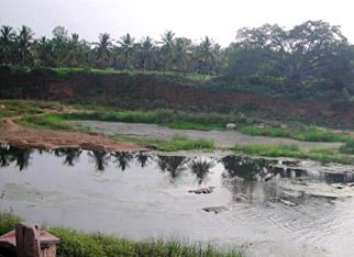 Shimsha River