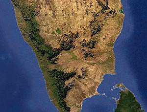 South Deccan Plateau Dry Deciduous Forests in India