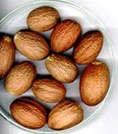 Kokam Seeds
