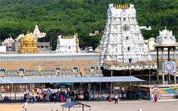 Tirupati Balaji Temple, Tirupati,  Andhra Pradesh