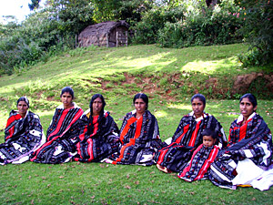 Indian Tribal Toda women Crafts shawl
