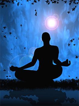 Purna Yoga, Types of Yoga
