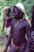 Andamanese