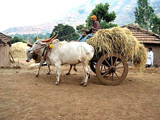 Bullock Cart - Transport System - History of Indian Villages