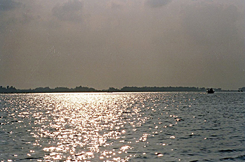 Chilka Wildlife Sanctuary, Chilka Lake Of Orissa