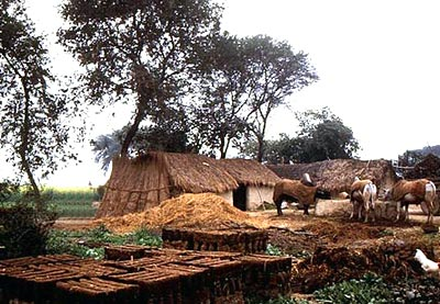 Villages of Uttar Pradesh, Villages of India