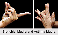 Bronchial And Asthma Mudra