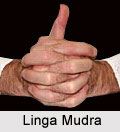 Linga Mudra