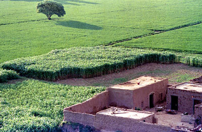 Villages of Punjab