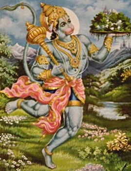Hanuman fetches Healing Herbs