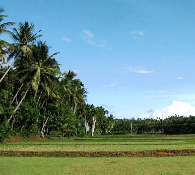 Kudlu, Kasaragod, Kerala