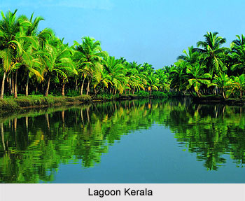 Kerala Lagoon - Coastal Plains of India