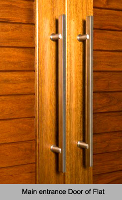 Main entrance door of flat vastu shastra for Entrance door design for flats
