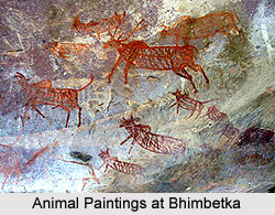 Bhimbetka - Cattle