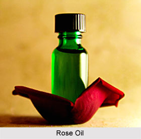Uses of Rose