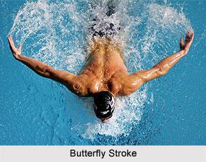 Butterfly_Strok...