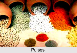 Pulses, Indian Food Crop