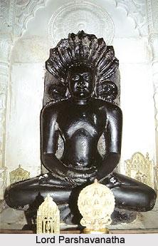 Parsvanatha Digamber Jain Teerth, Pateria, Madhya Pradesh