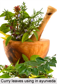 Uses of Curry Leaves in Ayurveda