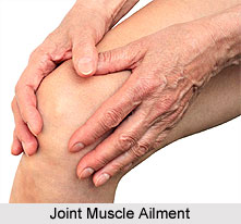 Causes of Joint Muscle Ailments