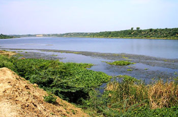 Chambal river - Tributaries of River Yamuna, Indian River