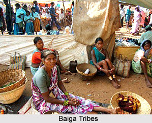 Indian Tribal Society