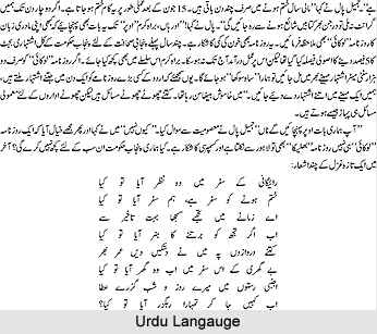Urdu Language