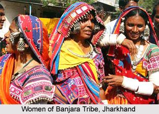 Indian Tribal Society