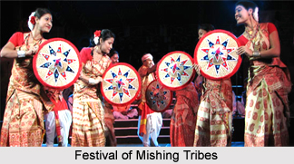 Culture of Mishing Tribe