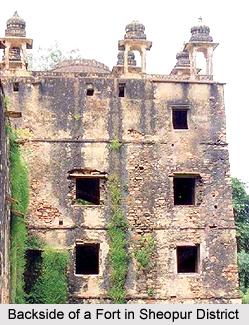 Sheopur District, Madhya Pradesh