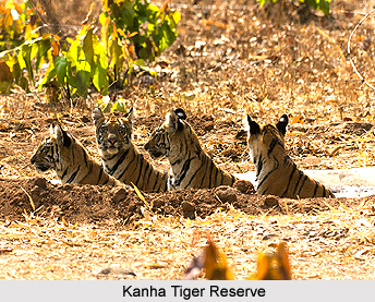 Mandla District, Madhya Pradesh