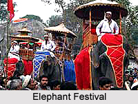 Festivals of Assam , India
