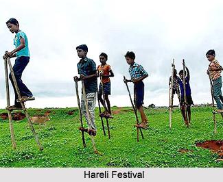 Hareli Festival, Chhattisgarh