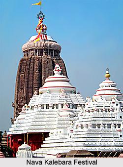 Nava Kalebara, Festival of Orissa