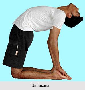 Yoga for Heart, Yoga and Health