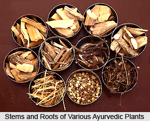 Ayurvedic concept of disease