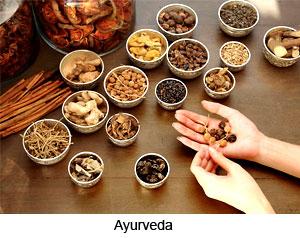 Ayurveda in Muslim Period