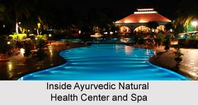 Ayurvedic Natural Health Center and Spa , Goa