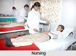 Bachelor of  Nursing Science