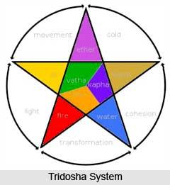 Tridosha System in Ayurveda