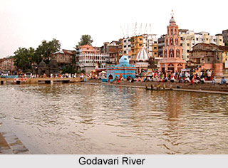 Godavari River, Indian River